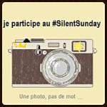 silent_sunday