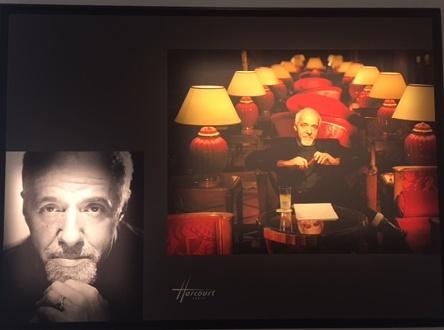 portrait-photo-harcourt