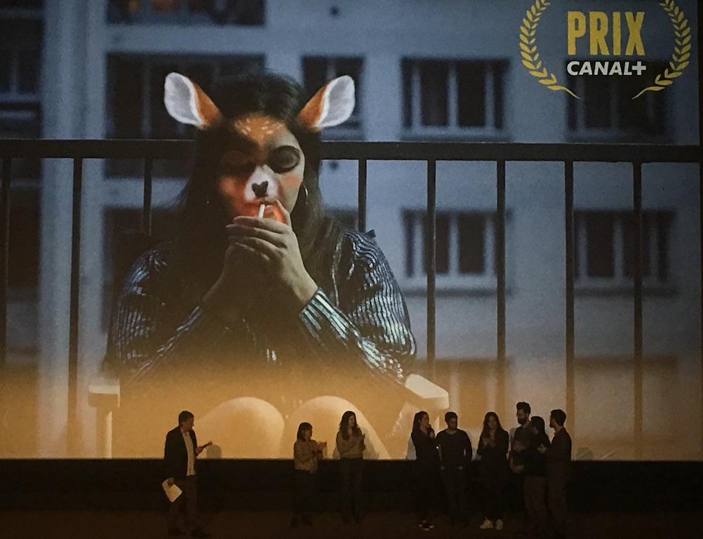 Découvrez le thème de la 8ème édition du Nikon Film Festival