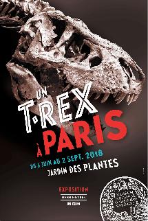 t.rex-museum-histoire-naturelle-paris
