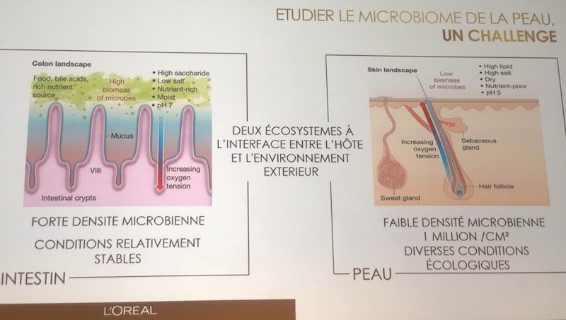MICROBIOTE CUTANÉ