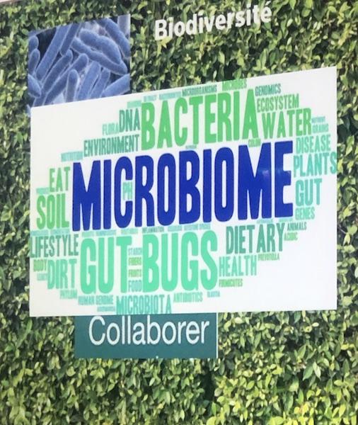 LE POUVOIR INVISIBLE DU MICROBIOME