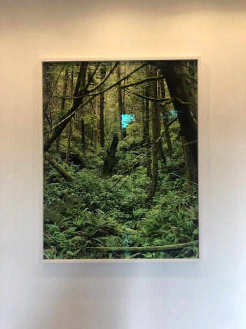 Here Not Here - Exposition Alexandra Hedison - H GALLERY- photo: zenitudeprofondelemag.com