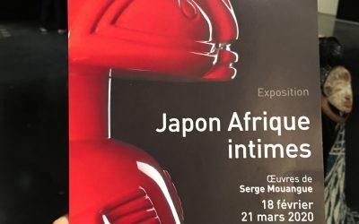 JAPON AFRIQUE INTIMES…